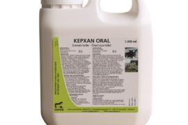 kepxan-oral-zelf-gem-02-14