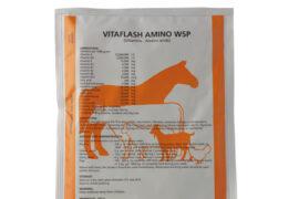 vitaflash-amino-wsp-100-g